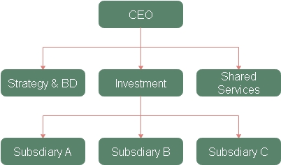 The holding company structure