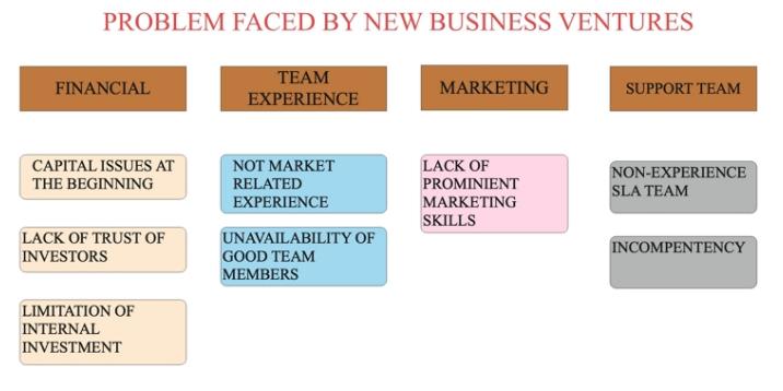 Business ventures problems