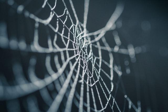 Best Spider Diagram Maker