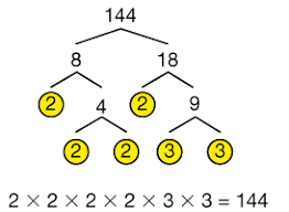 the factor tree for the number 144