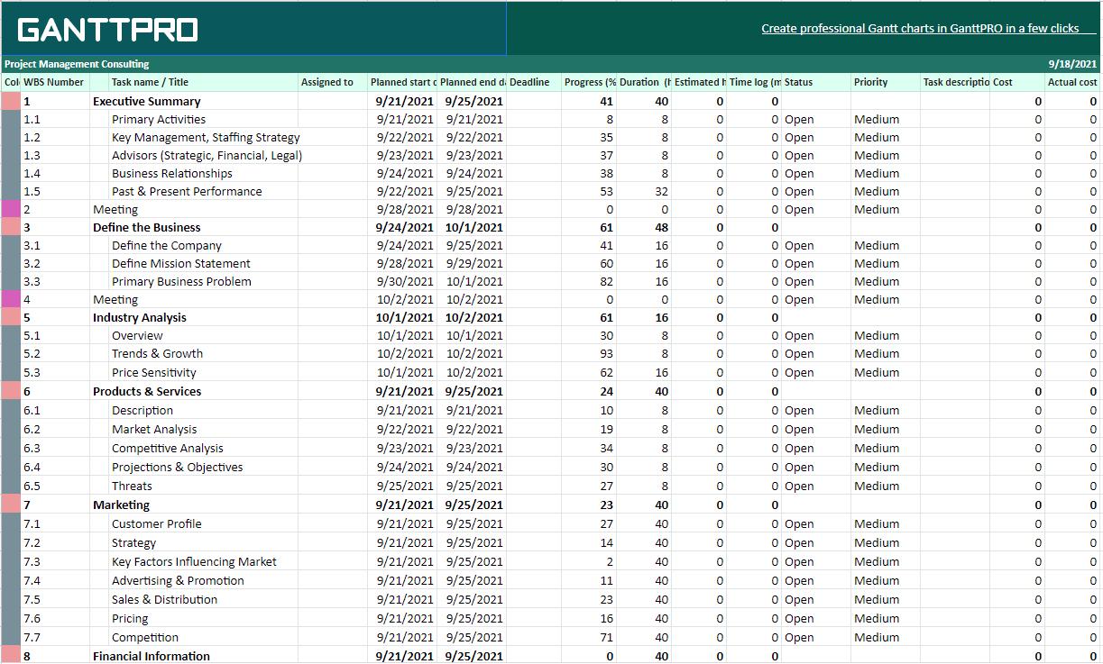 Gantt Chart for Consultants