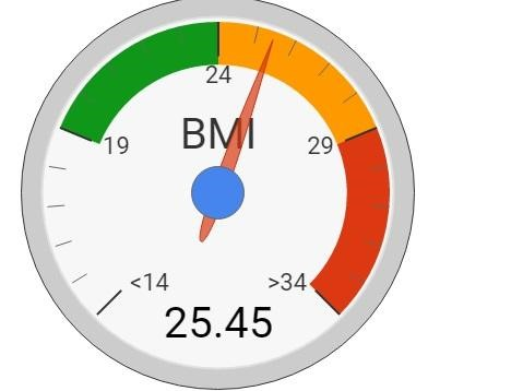 a dial chart showing the Body Mass Index