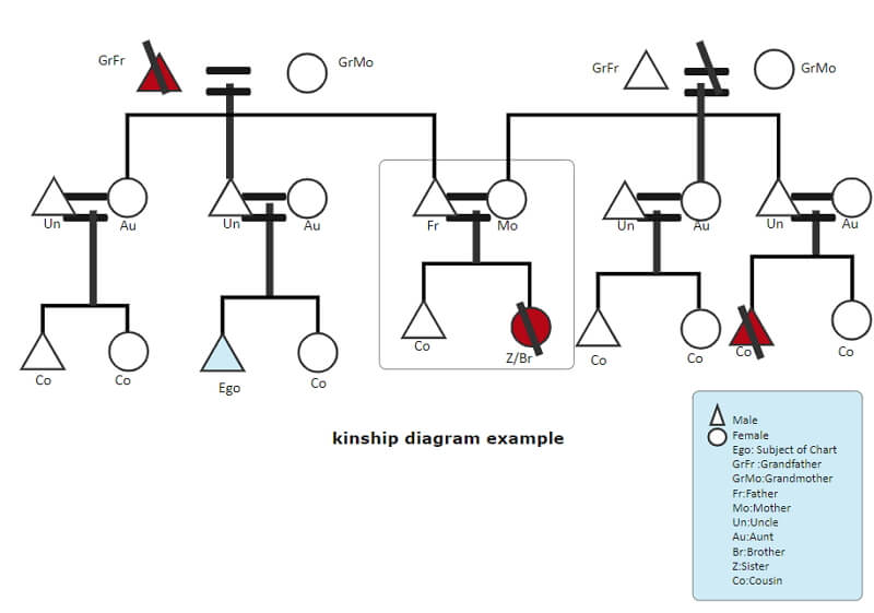 family genogram