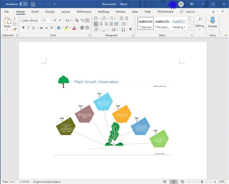 Word Graphic Organizers Template