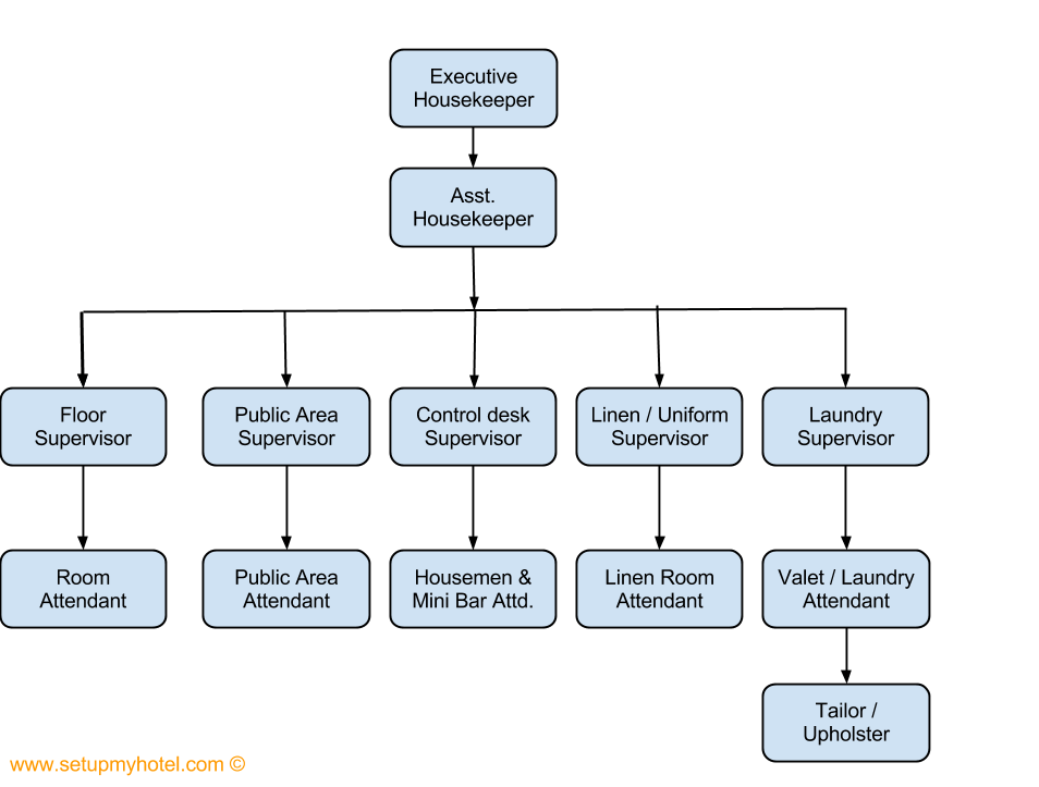 The organizational chart of the housekeeping department