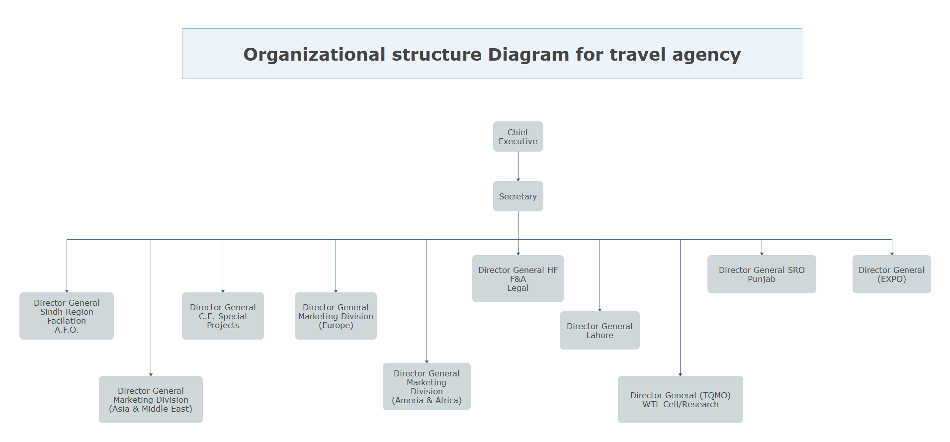 Organizational Structure Diagram for Travel Agency