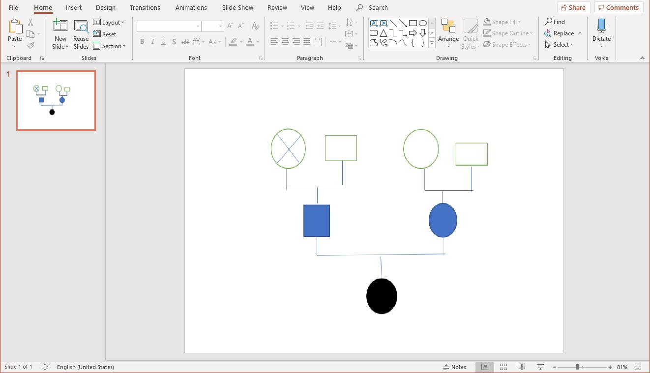 Make a Genogram in PowerPoint
