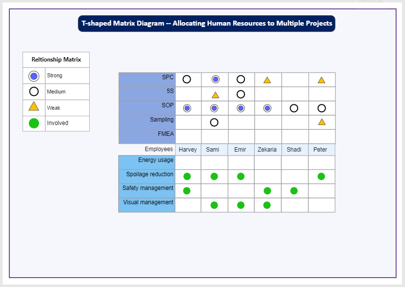 T-Shaped Matrix