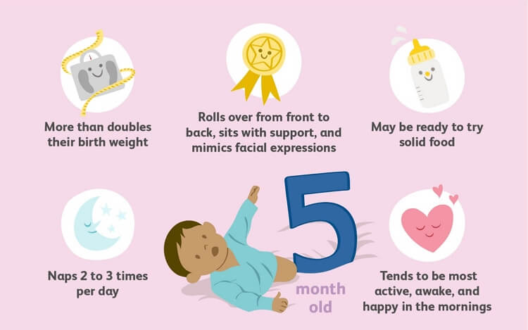 5-Months Old Baby Milestones Chart Template