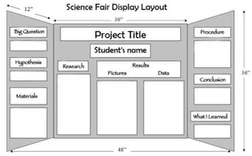 Science Fair Display Layout