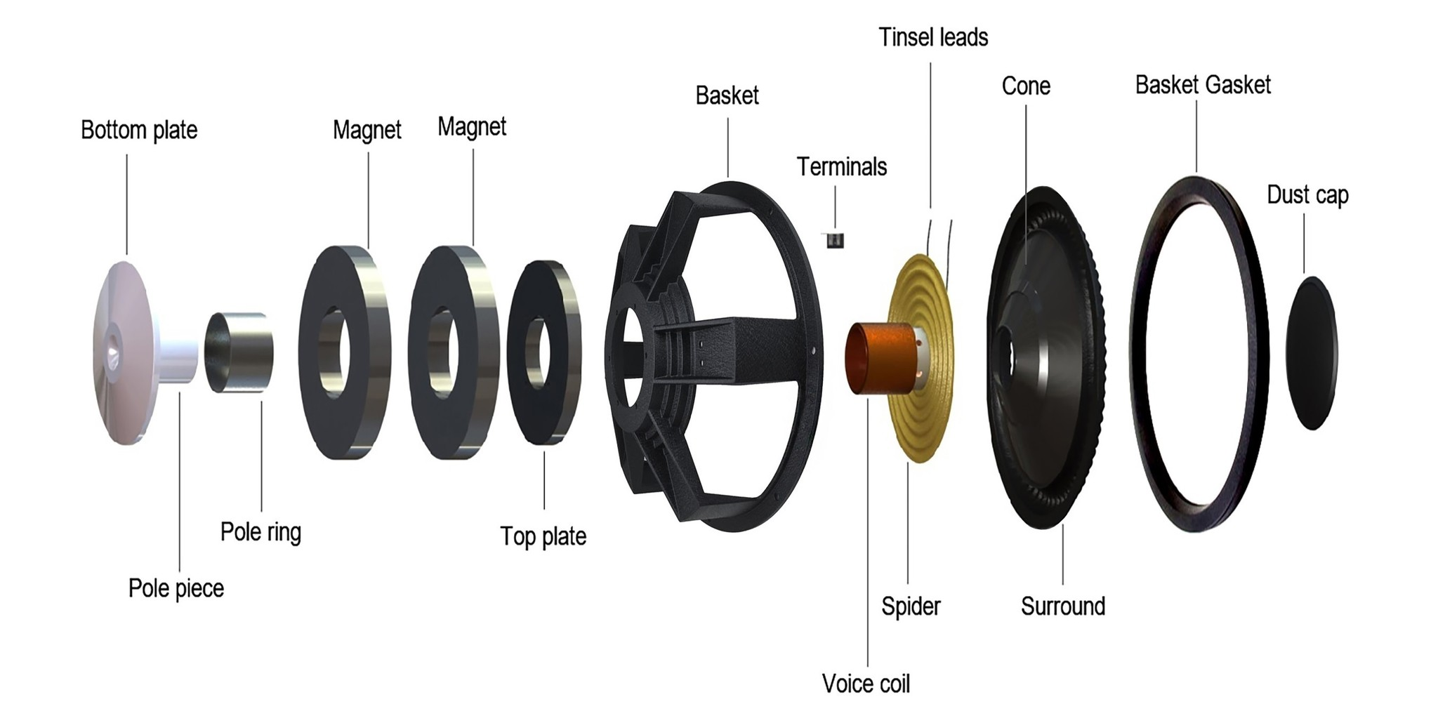 Anatomy of a Subwoofer