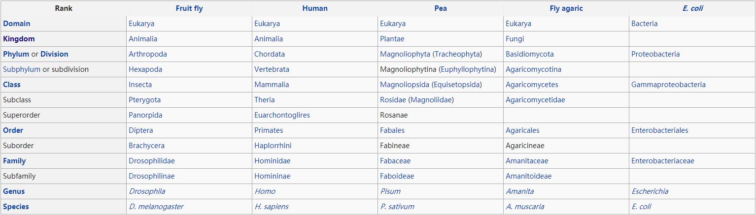 Taxonomy Rank