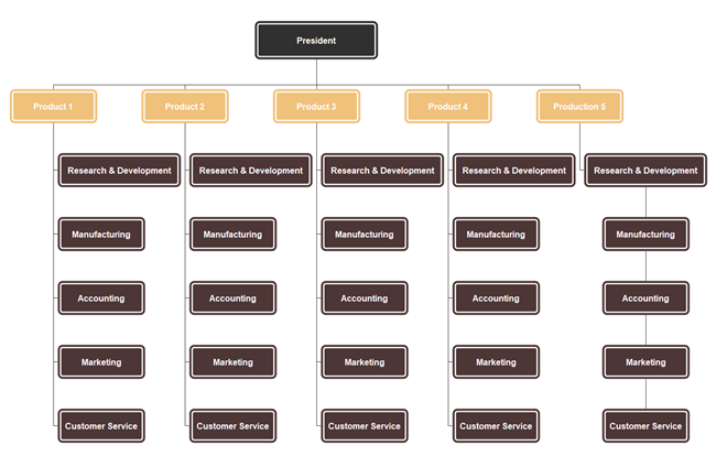 Divisional Organizational Structure