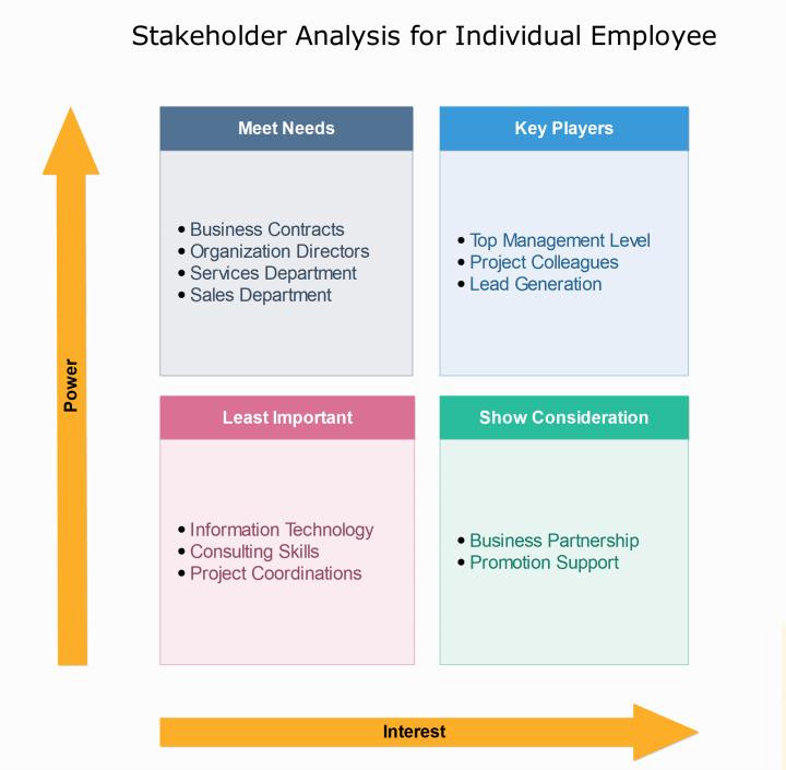 Individual Employee Stakeholder Analysis Template