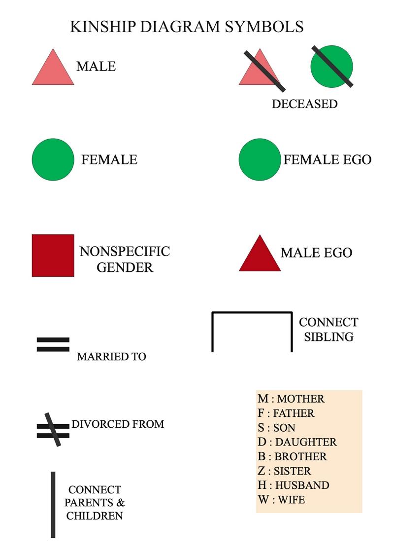 symbole du tableau de parenté