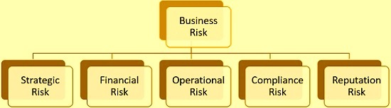 business risk types