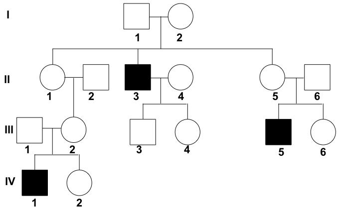 human pedigree analysis