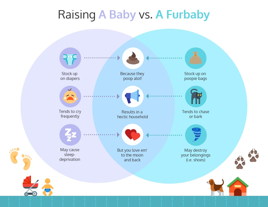 Raising Baby or Fur Baby