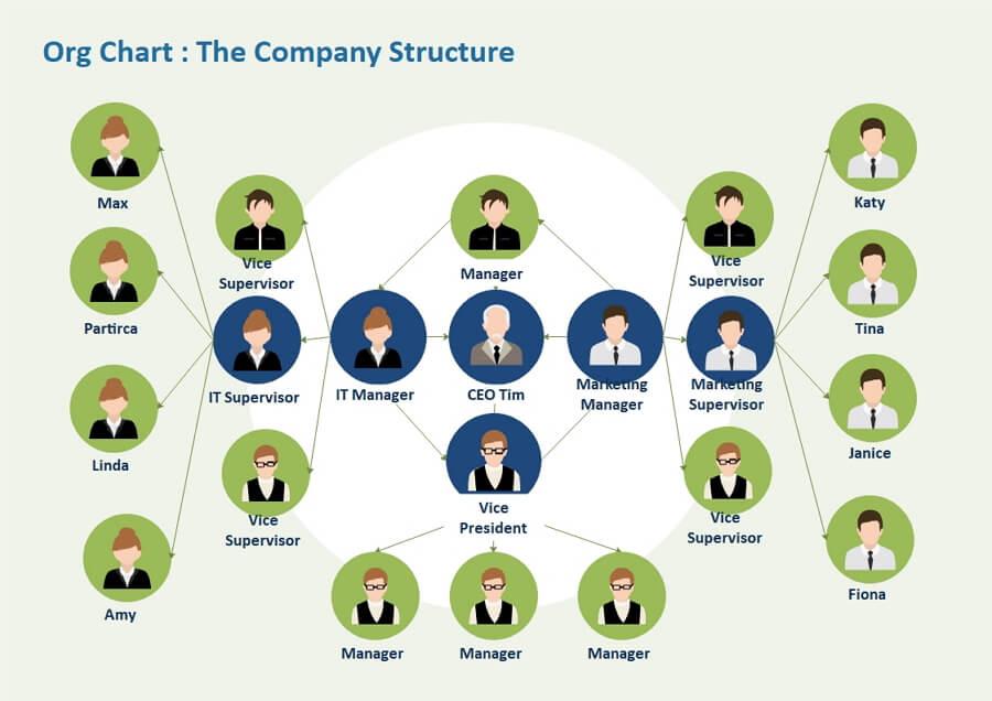 Corporation Organization Structure