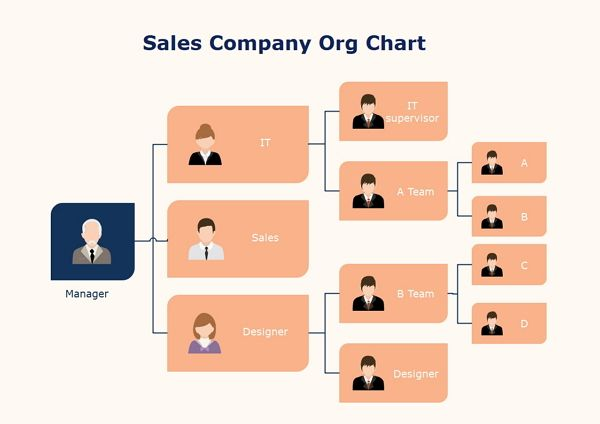 Small Company Org Chart