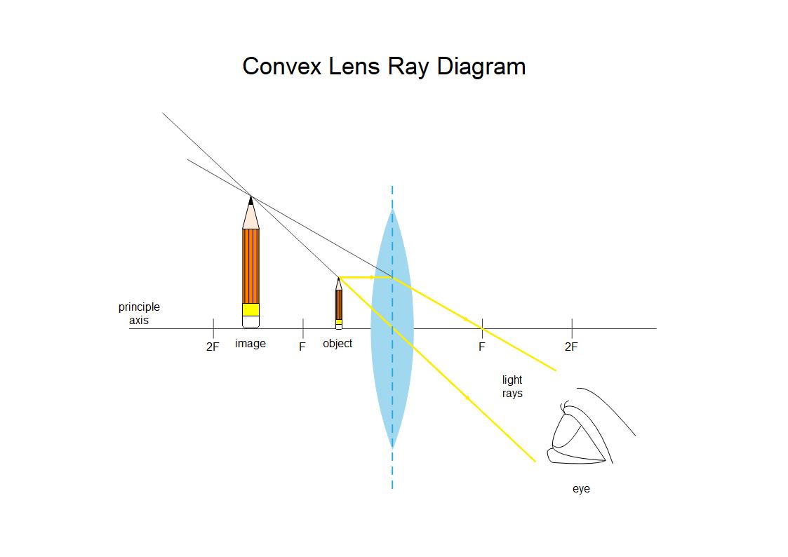凸レンズ光線図