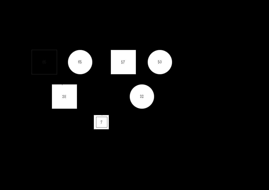 ジェノグラム例