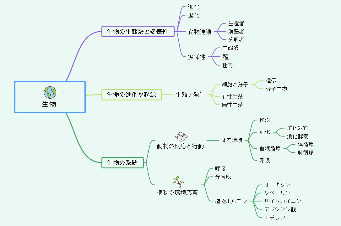生物のマインドマップ