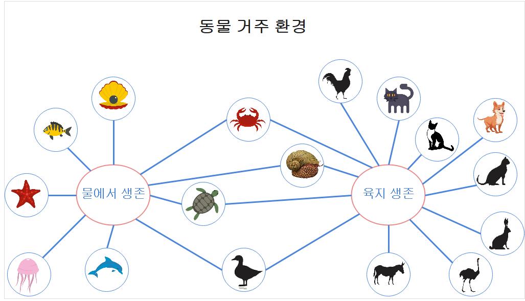 동물 버블 마인드맵
